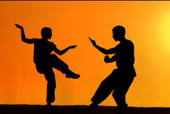 Karate fighters Royalty Free Stock Photo