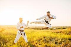 Karate fighters, kick in flight on training fight. In summer field. Martial art fighters on workout outdoor, technique practice royalty free stock photo