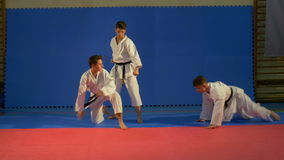 Karate fighters practicing attack and several blocking techniques at the dojo. Karate fighters practicing attack and blocking techniques at the dojo stock video