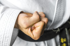 Karate fist Royalty Free Stock Images