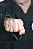Karate Fist Stock Photo