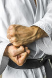 Karate fists Royalty Free Stock Photos
