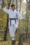 Karate in forestry Royalty Free Stock Photos