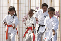 Karate Form Royalty Free Stock Photography