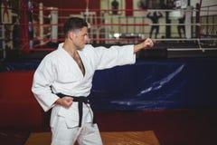 Karate gracza karate ćwiczy postawa zdjęcie stock
