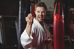 Karate gracza spełniania karate postawa zdjęcie royalty free