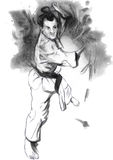 Karate - hand dragen (calligraphic) illustration Arkivbild