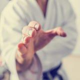 Karate hand Royalty Free Stock Photos