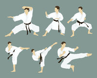 Karate icon set vector illustration