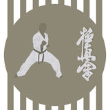 Karate Royalty Free Stock Photos