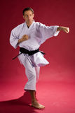 Karate Instructor. A male karate instructor in uniform with a black belt royalty free stock image