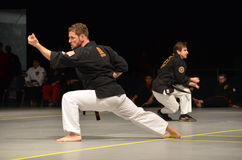 Karate Instructors performing. Master Karate instructors performing karate moves in competition with a large crowd of karate students watching and cheering their royalty free stock images