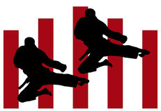 Karate jump Royalty Free Stock Photo
