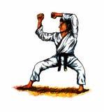 Karate Kata (2010) Royalty Free Stock Photography