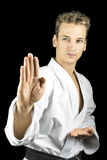 Karate kata royalty free stock photo