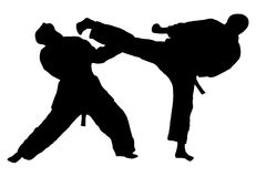 Karate kick Royalty Free Stock Photography