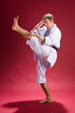 Karate kick. A man with a black belt practicing his karate kicks Royalty Free Stock Images