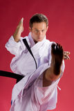 Karate kick Royalty Free Stock Image