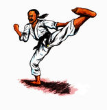 Karate Kick (2010). Man making a high karate kick Stock Photos