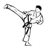 Karate kick. Vector illustration : Karate kick on a white background Stock Image