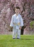 Karate kid Royalty Free Stock Photography