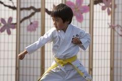 Karate Kid Stock Afbeelding