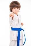 Karate Kid Royaltyfri Foto