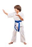 Karate Kid. Royalty Free Stock Image