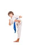 Karate kid. Stock Image