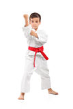 A karate kid posing. Full length portrait of a karate kid posing isolated on white background Royalty Free Stock Photography