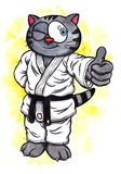 Karate Kitten smiling The Power of Karate-Do, 2017 Royalty Free Stock Image