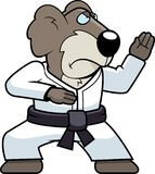 Karate Koala Royalty Free Stock Photo