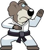 Karate Koala Royalty Free Stock Photo