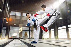 Karate kobieta w akci Zdjęcia Royalty Free