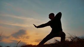 Karate kung Fu σκιαγραφιών άσκησης μοναχών πολεμικών τεχνών πολεμιστών ατόμων στο χλοώδη ορίζοντα στο ηλιοβασίλεμα Karate πόδι λα απόθεμα βίντεο