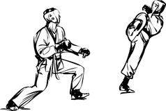 Karate Kyokushinkai  martial arts  sports Stock Image
