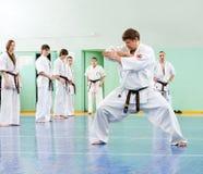 Karate lesson Royalty Free Stock Photo