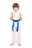 Karate. Stock Image