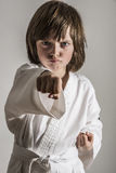 Karate Royalty Free Stock Image