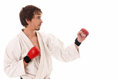 Karate male fighter young isolated on white. Background royalty free stock image