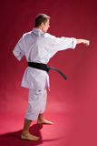 Karate male  instructor Royalty Free Stock Images