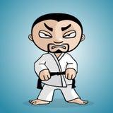 Karate man Stock Photos