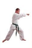 Karate man Stock Photography
