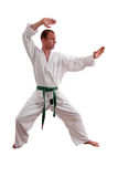 Karate man Stock Photo