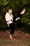 Karate Man stock photos