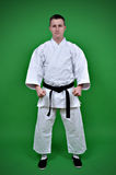 Karate Man. Standing on green background Stock Image