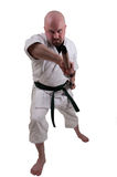 Karate man 2 Stock Photography