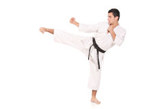 Karate man exercising Royalty Free Stock Photos