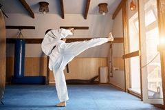 Black belt karate fighter training hight kick royalty free stock images