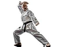 Karate man Royalty Free Stock Image